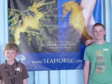 boys-seahorse-poster
