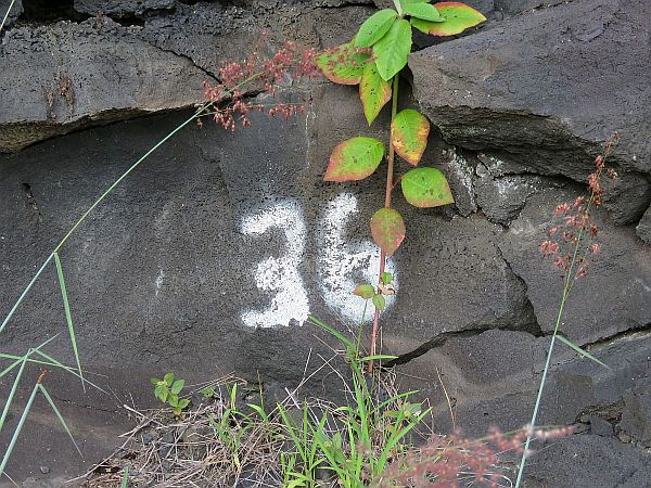 another-geologist-marking