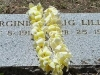 Ginger\'s headstone