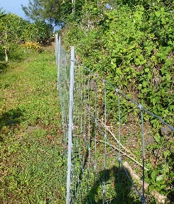 fence_0