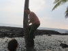 tracy-showing-he-can-climb-a-coconut-tree