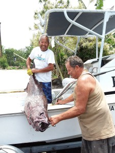 harold's big fish.small